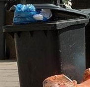Rotherham Council to charge £30 for wheelie bins