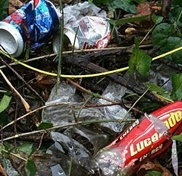Litterbugs fined total of £800