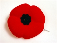 Remember the fallen: Rotherham poppy day events