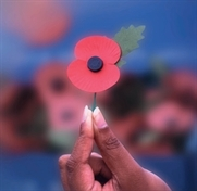 British Legion appeals for more poppy sellers