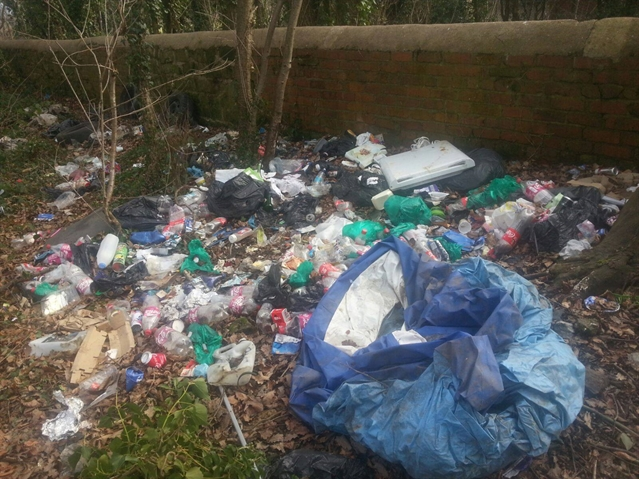 Fly-tipping disgrace disgusts Kimberworth Park walkers