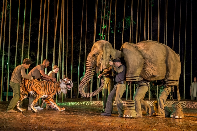 Meet Oona the elephant and win tickets to see her in the jungle