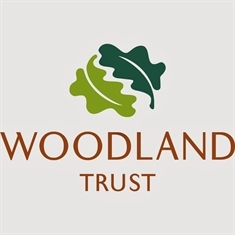 Woodland development group needs more members