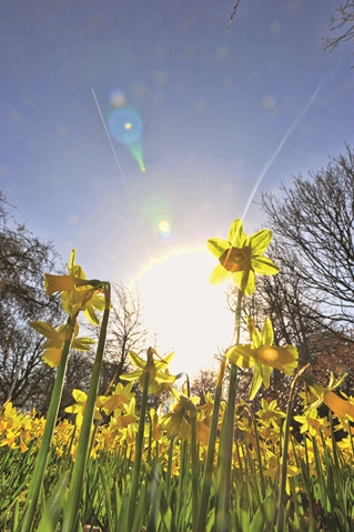 Spring has sprung - but rain is on the way