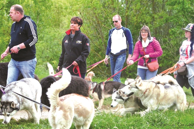 Walkers and their four-legged friends raise awareness of ...