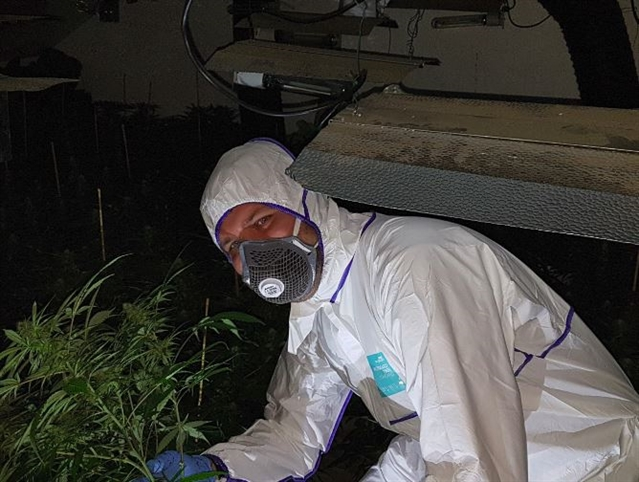 £300,000 cannabis farm shut down