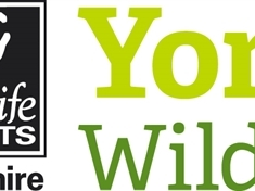 Join wildlife trust for 12-month placement
