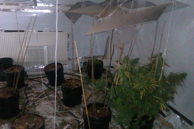 Police find drugs factory at house