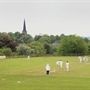 LAST STAND: 140-year-old cricket club on the brink of folding