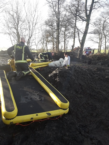 PICTURED: Dog and owner rescued from sinking mud bath