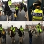 Horses help fight crime in Eastwood