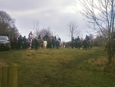 Wentworth landowners blasted for allowing hunt with dogs to use their land