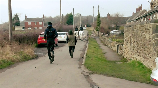 POLL: Should Rotherham landowners allow legal hunting with dogs on their land?