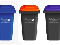 Revealed: the result of the Great Rotherham Bin Vote