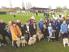 They think it's all rover! Maltby Main FC smashes world record