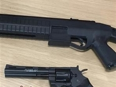 Proactive police seize 'very realistic' guns