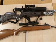 Operation Alligator: Officers seize air weapons