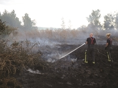 VIDEO: Grass fire in Denaby Main smouldering for four days