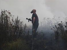 Arsonists target two more areas of grassland