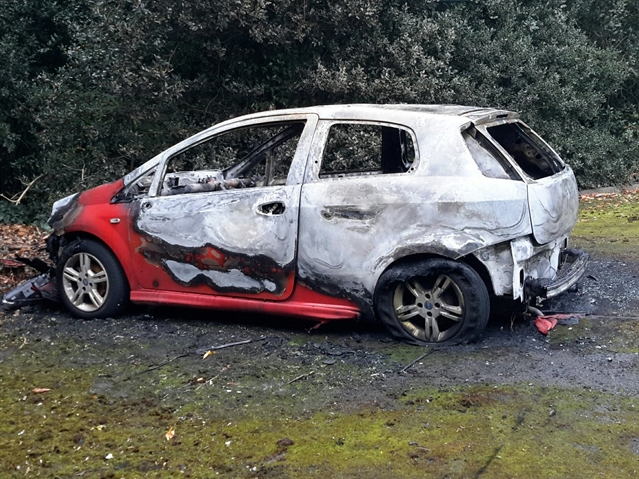 Fiat car torched in East Dene