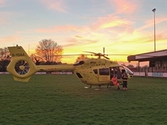 Air ambulance called after person fell from tree