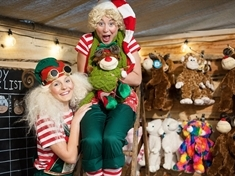 Do-it-your-elf delights: Inside Cannon Hall Farm's Magical Toy Factory