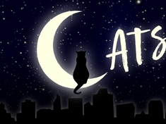 A purr-fect night out? Cats the musical comes to Sheffield Lyceum
