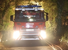 Conifer set alight in East Dene