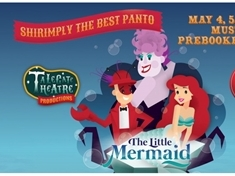 WIN a family ticket to see the Little Mermaid pantomime at Cannon Hall Farm