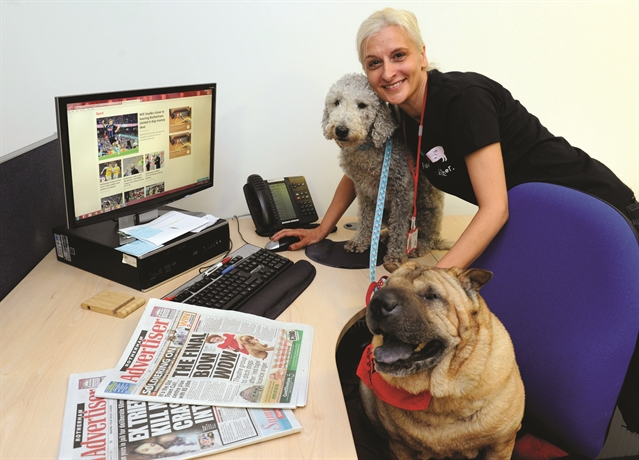 Bring Your Dog to Work Day: send us your pawsome pictures
