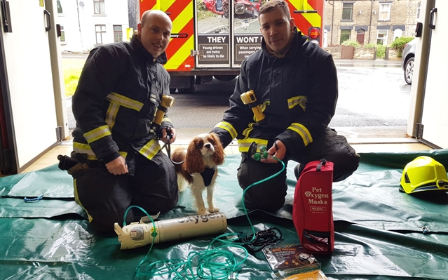 Oxygen masks for pets on all South Yorkshire fire engines