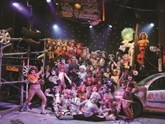 THEATRE REVIEW: Cats by RTSA at Rotherham Civic