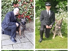 Four-legged recruits join police beat