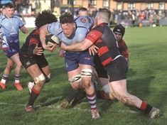 'Hurting' Rotherham Titans press on with recruitment