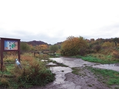 Action needed to stop off-roaders ruining nature reserve