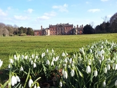 Snowdrop season brings carpet of blooms to Wentworth
