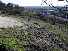"Hillside ""vandalism"" must be sorted by planners, say residents"